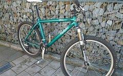 Klein Pulse 1994