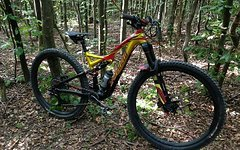 Specialized Stumpjumper Evo Troy Lee Edition