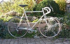 Vitus 979 Duralinox MK1 - Silber - RH58