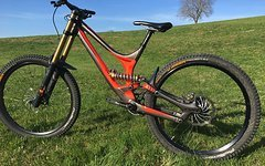 Specialized Demo  8.2   2016  L  Custom    !Alu!