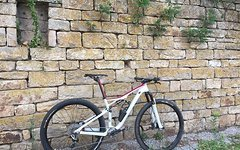 Specialized Epic S-Works 29 Gr. M Egger Edition