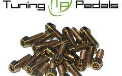 Tuning Pedals Titan Schrauben M5 x 8 / 10 / 12 / 14 / 16 / 18 / 20 / 25 / 30 / 35 /40 / 45 /50 mm , DIN912 konisch, Grade 5 - gold