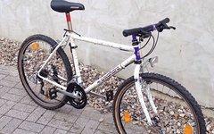 Kuwahara Modell Lion 1991 Retrobike