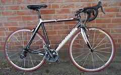 Focus Cayo Rennrad Carbon Dura Ace 2x10 8,5kg kein Ultegra ca.1000km Ll