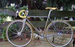 Gimondi Singlespeed, gemuffter Retro-Stahlrahmen, 52cm