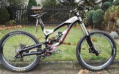YT Industries TEUS 2.0 LTD WC (L)