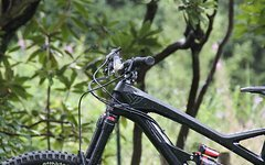 YT Industries Capra CF Large *Custom*