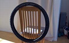 Schwalbe Fat Albert Front 29""