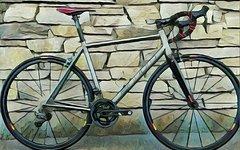 Einhorn Bikes einhorn 187 corsa ti di2