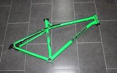 Transition TransAm 29, XL, grün