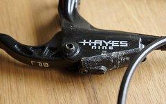 Hayes 9 Modelljahr 06