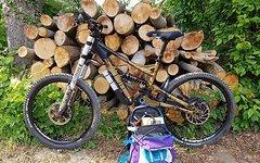 Bergamont G9 Downhill Bike . Fox Saint Fully