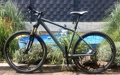 "Focus Bold Factory (custom-made) 27,5""/650b"