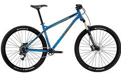 Transition Bikes TransAm 29, Medium, Blau oder Grau