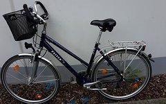 Falter Damenrad FT-40 Active
