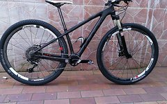 Felt Nine Teambike Sram Eagle 1x12, Sid Worldcup, Sram Rise 60 Carbon Laufräder