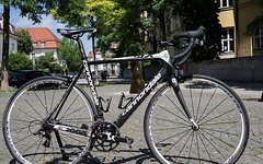 Cannondale Six Carbon Rennrad