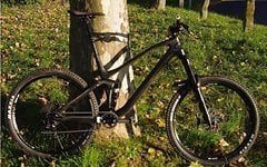 Canyon Spectral CF 8.0 EX in L + Service & Neuteile