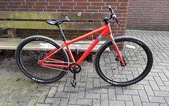 Vitus Mountainbike MTB Singlespeed 29 Zoll