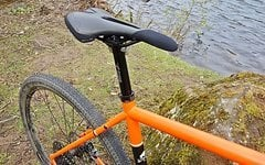WTB Riddler 700x45C TCS - Gravel Bike Reifen - 2 Stück!