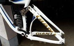 Giant Glory 0 Gr. L NEUER R2C + WORKS STEUERSATZ