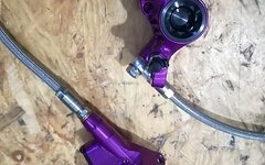 [Tausche] Hope V4 Vorderrad Bremse in purple [GEGEN] E4 oder V4 in schwarz