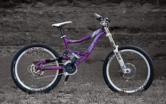 Rocky Mountain Flatline SE Custom Aufbau ;o)