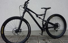 Specialized Camber - 29'' - L - Push tuned