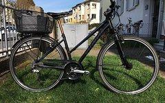Specialized Größe M Specialized Crossover City-/Trekkingbike