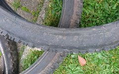 3 Stück Conti Explorer, Maxxis Ardent,Point