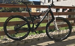 Specialized Stumpjumper Elite 29""