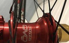 Ztr Flow Ex Hope Pro 2 Evo Sapim CX-Ray, Nabe und Nippel Rot