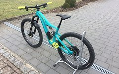Specialized Rhyme Carbon Custom Modell 2017