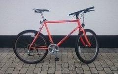 Diamondback DH Ascent 1990/1991