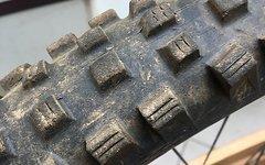 Mavic 521 Auf Dt Swiss Xrc 180 Tubeless mit Reifen