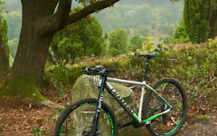 Cannondale F-SI 1 29 2016 mit Lefty 2.0