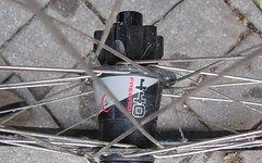 DT Swiss Laufrad und FR 440 Nabe