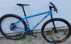 Salsa El Mariachi (medium) 29er