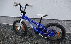 Specialized Hotrock 16 Zoll Blau/Weiß Kinder MTB