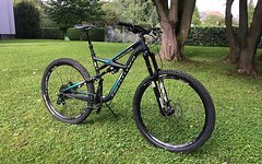 Specialized Enduro Elite 29 Gr. L
