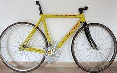 Wilier Triestina Rennrad-Rahmen mit Zubehör Campagnolo