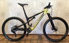 Rocky Mountain Thunderbolt 799MSL (L) Carbon 11,2kg