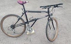 Troger Latemar (Classic Bike) Stahlhardtail