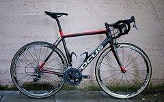 Focus Cayo RH 57