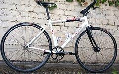 Specialized Langster London Limited Singlespeed Bike Perlmutweiss 54 er Rahmen bis ca. 180 Körpergrösse