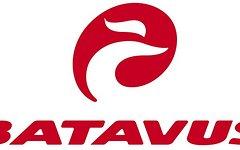 Batavus , Straßenrennrad von BATAVUS ,27 Gang - Kette von CAMPAGNOLO