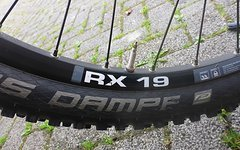 "DT Swiss RX19 26"" stabiler LRS"