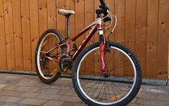 Felt Q24 Jugend-Mountainbike rot metallic