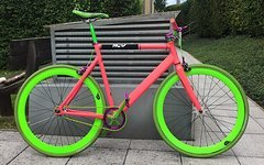 Aventon Bahnrad / Singlespeed /Fixie