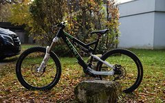 Cheetah Bikes Freeride Ignition